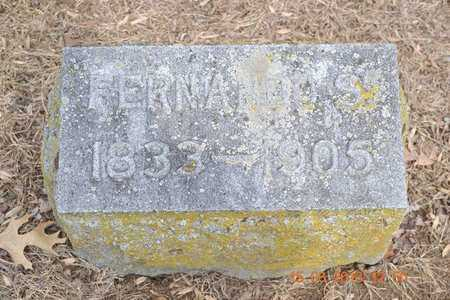 HARRIS, FERNANDO S. - Branch County, Michigan   FERNANDO S. HARRIS - Michigan Gravestone Photos