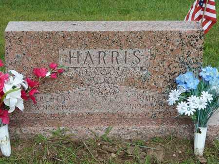 HARRIS, JOHN A. - Branch County, Michigan | JOHN A. HARRIS - Michigan Gravestone Photos