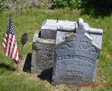 HARRIS, JANE - Branch County, Michigan | JANE HARRIS - Michigan Gravestone Photos