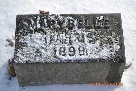 HARRIS, MARY BELLE - Branch County, Michigan | MARY BELLE HARRIS - Michigan Gravestone Photos