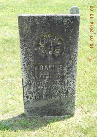 HENRY, ADALINE - Branch County, Michigan | ADALINE HENRY - Michigan Gravestone Photos