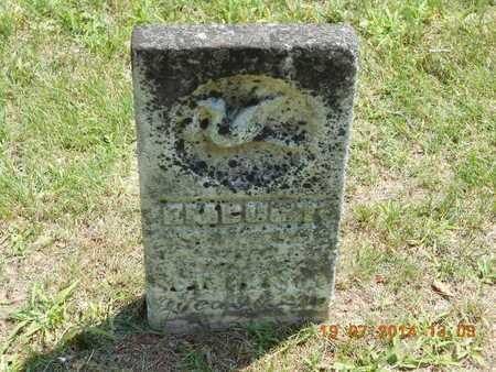 HENRY, EMBURT - Branch County, Michigan | EMBURT HENRY - Michigan Gravestone Photos