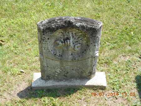 HENRY, MORRIS - Branch County, Michigan   MORRIS HENRY - Michigan Gravestone Photos