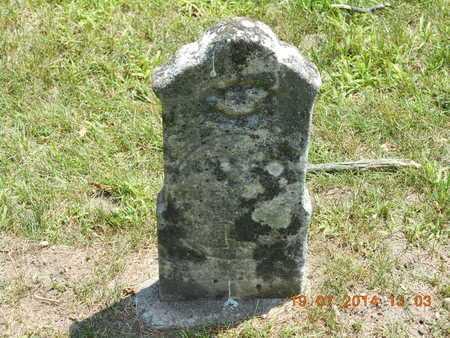 HENRY, MICHAEL - Branch County, Michigan   MICHAEL HENRY - Michigan Gravestone Photos