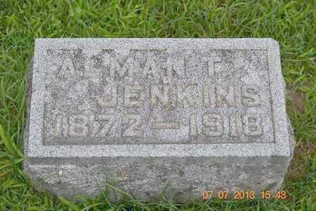 JENKINS, ALMAN T. - Branch County, Michigan | ALMAN T. JENKINS - Michigan Gravestone Photos
