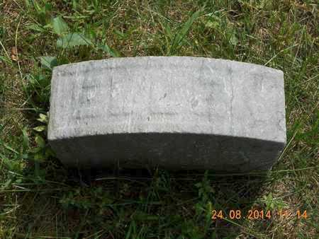 JENKINS, ELLEN - Branch County, Michigan | ELLEN JENKINS - Michigan Gravestone Photos