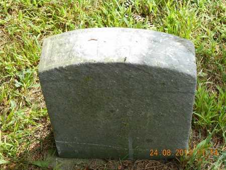 JENKINS, WILLIAM - Branch County, Michigan | WILLIAM JENKINS - Michigan Gravestone Photos