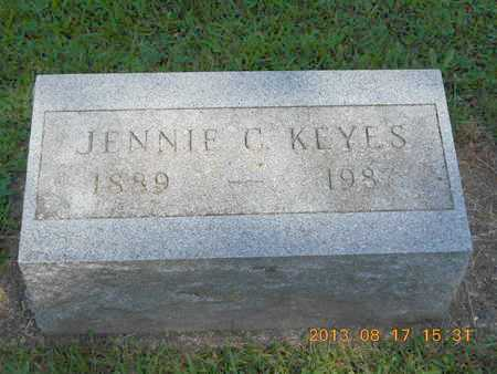 KEYES, JENNIE C. - Branch County, Michigan | JENNIE C. KEYES - Michigan Gravestone Photos
