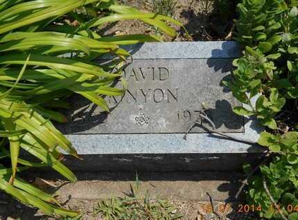 KINYON, DAVID - Branch County, Michigan | DAVID KINYON - Michigan Gravestone Photos