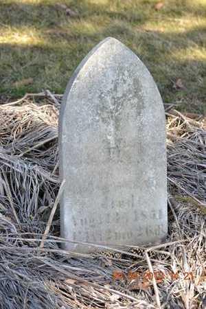 LAWRENCE, CHILD - Branch County, Michigan   CHILD LAWRENCE - Michigan Gravestone Photos