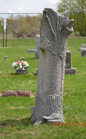 LAWRENCE, WILLIAM - Branch County, Michigan | WILLIAM LAWRENCE - Michigan Gravestone Photos