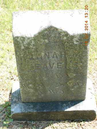 LEAVENS, HANNAH - Branch County, Michigan | HANNAH LEAVENS - Michigan Gravestone Photos