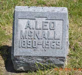 MCNALL, A. LEO - Branch County, Michigan | A. LEO MCNALL - Michigan Gravestone Photos