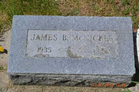 MCNICKLE, JAMES B. - Branch County, Michigan | JAMES B. MCNICKLE - Michigan Gravestone Photos