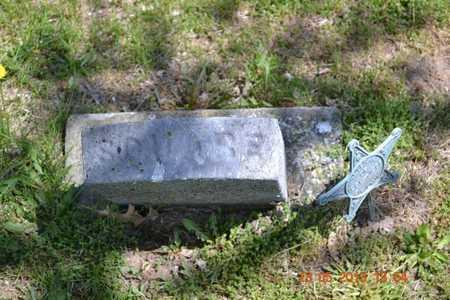 MELENDY, SQUIRE - Branch County, Michigan | SQUIRE MELENDY - Michigan Gravestone Photos