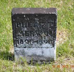 TEED MERWIN, PHEBE - Branch County, Michigan   PHEBE TEED MERWIN - Michigan Gravestone Photos