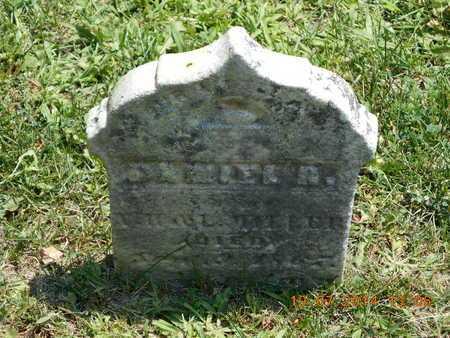 MILLER, DANIEL R. - Branch County, Michigan | DANIEL R. MILLER - Michigan Gravestone Photos