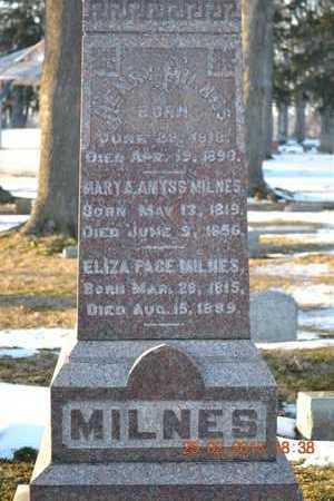 MILNES, ELIZA - Branch County, Michigan | ELIZA MILNES - Michigan Gravestone Photos