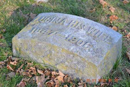 MILNES, LUCINA EUNICE - Branch County, Michigan   LUCINA EUNICE MILNES - Michigan Gravestone Photos