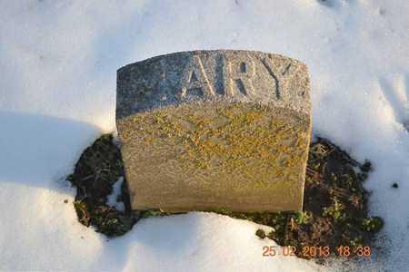 MILNES, MARY A. - Branch County, Michigan   MARY A. MILNES - Michigan Gravestone Photos
