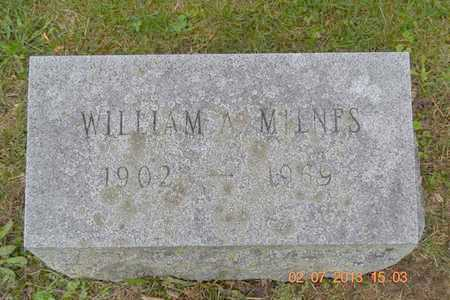 MILNES, WILLIAM A. - Branch County, Michigan   WILLIAM A. MILNES - Michigan Gravestone Photos