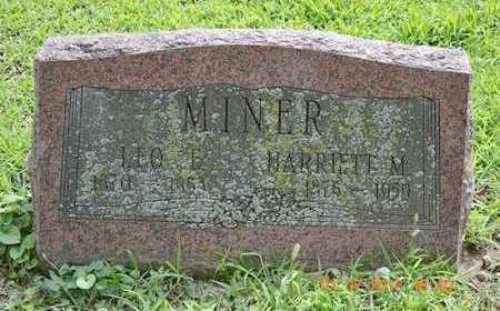 MINER, LEO E. - Branch County, Michigan   LEO E. MINER - Michigan Gravestone Photos