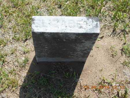 MINIER, ELIZABETH - Branch County, Michigan | ELIZABETH MINIER - Michigan Gravestone Photos