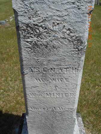 MINIER, WILLIAM - Branch County, Michigan | WILLIAM MINIER - Michigan Gravestone Photos