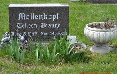 MOLLENKOPH, COLLEEN JOANNE - Branch County, Michigan | COLLEEN JOANNE MOLLENKOPH - Michigan Gravestone Photos