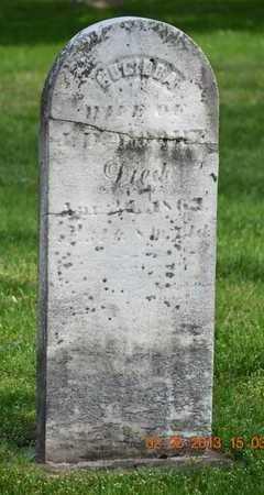 MOORE, LUCINDA - Branch County, Michigan   LUCINDA MOORE - Michigan Gravestone Photos