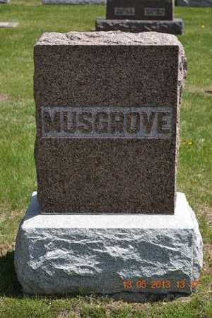 MUSGROVE, FAMILY - Branch County, Michigan | FAMILY MUSGROVE - Michigan Gravestone Photos