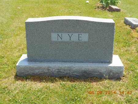 NYE, FAMILY - Branch County, Michigan | FAMILY NYE - Michigan Gravestone Photos