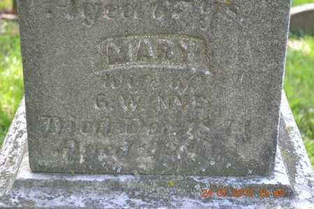 NYE, MARY - Branch County, Michigan | MARY NYE - Michigan Gravestone Photos