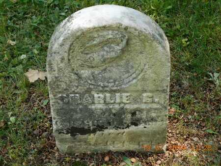 PALMER, CHARLIE G. - Branch County, Michigan | CHARLIE G. PALMER - Michigan Gravestone Photos