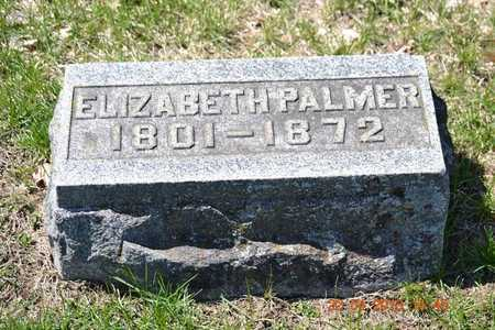 PALMER, ELIZABETH - Branch County, Michigan | ELIZABETH PALMER - Michigan Gravestone Photos