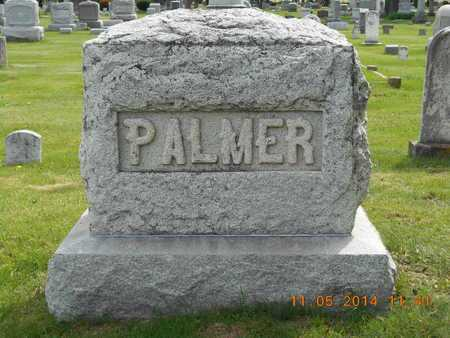 PALMER, FAMILY - Branch County, Michigan | FAMILY PALMER - Michigan Gravestone Photos