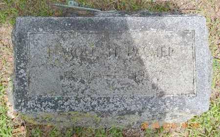 PALMER, HAROLD H. - Branch County, Michigan | HAROLD H. PALMER - Michigan Gravestone Photos