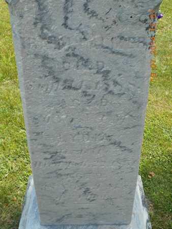 PALMER, IRA M. - Branch County, Michigan   IRA M. PALMER - Michigan Gravestone Photos