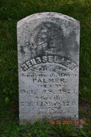 PALMER, RENSSELAER - Branch County, Michigan | RENSSELAER PALMER - Michigan Gravestone Photos