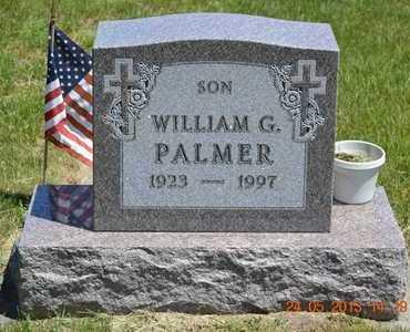 PALMER, WILLIAM G. - Branch County, Michigan | WILLIAM G. PALMER - Michigan Gravestone Photos