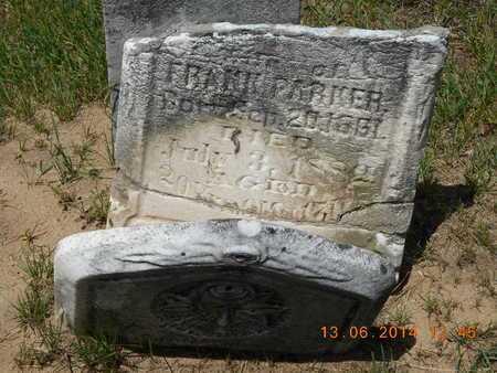 PARKER, ABIGAIL - Branch County, Michigan | ABIGAIL PARKER - Michigan Gravestone Photos