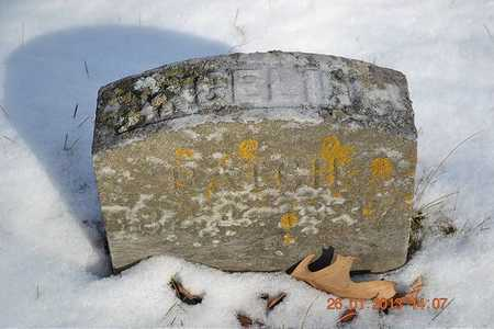 PATCH, ANGELINE - Branch County, Michigan | ANGELINE PATCH - Michigan Gravestone Photos