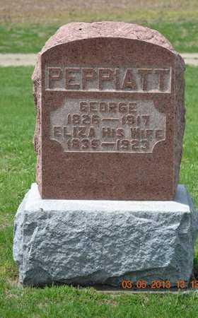 PEPPIATT, GEORGE - Branch County, Michigan | GEORGE PEPPIATT - Michigan Gravestone Photos
