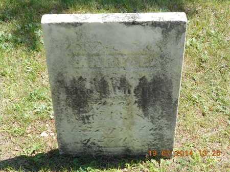 PHELPS, MARY E. - Branch County, Michigan | MARY E. PHELPS - Michigan Gravestone Photos