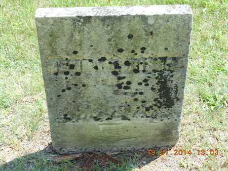 PIERCE, HENRY LAWTON - Branch County, Michigan | HENRY LAWTON PIERCE - Michigan Gravestone Photos