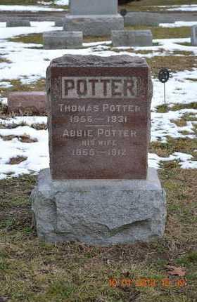 POTTER, THOMAS - Branch County, Michigan | THOMAS POTTER - Michigan Gravestone Photos