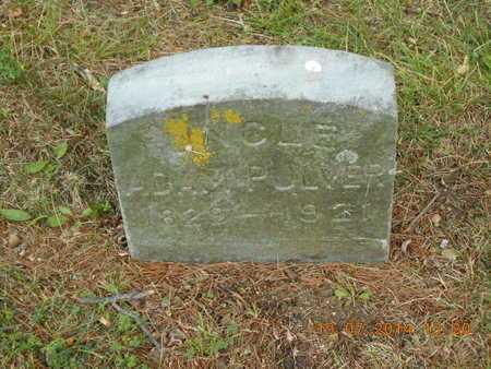 PULVER, ADAM - Branch County, Michigan   ADAM PULVER - Michigan Gravestone Photos