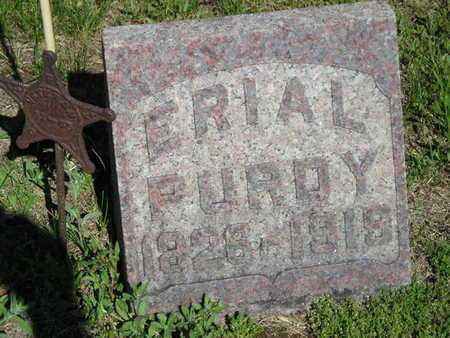PURDY, ERIAL - Branch County, Michigan   ERIAL PURDY - Michigan Gravestone Photos