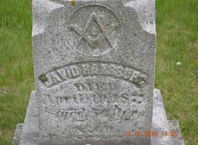 RANSBURG, DAVID(CLOSEUP) - Branch County, Michigan | DAVID(CLOSEUP) RANSBURG - Michigan Gravestone Photos