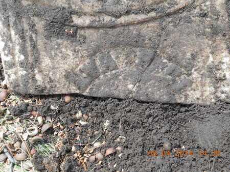 RICE, ALVA - Branch County, Michigan | ALVA RICE - Michigan Gravestone Photos